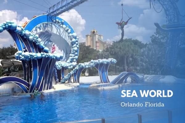 Park_your_rental_scooter_and_dive into_the_blues_of_sea_world_theme_park